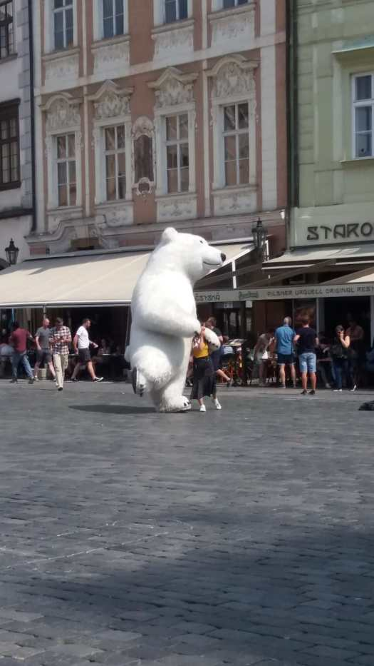 The photo shows a polar bear dancing in the street.