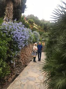 We are standing in the gardens of the Gibafaros