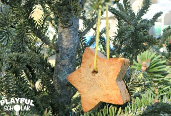 How to Make Hanging Suet Ornaments