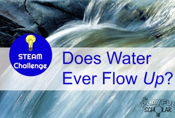 STEAM Challenge – Does Water Ever Flow Up?