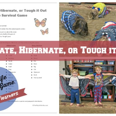 A Hibernate or Migrate Game for Early Learners