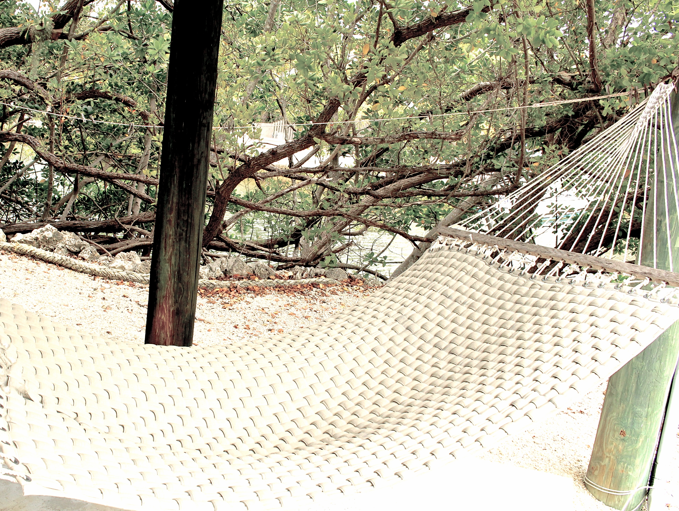 i put together a playlist of hammock songs that are extremely laid back  if hemingway were living in this generation then this would probably be his music     hammock by the sea   playlist   the playlist queen  rh   theplaylistqueen