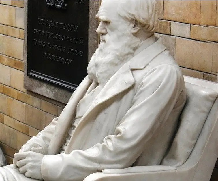 For This Physicist, 'Overthrowing' Darwinism Is on the Table