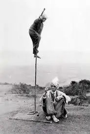 Evolution and the Indian Rope Trick