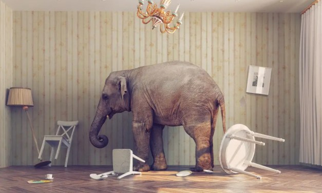 The Elephant in Religion's Room