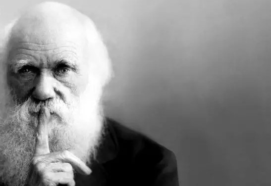 Celebrating Science's Bludgeon in Today's Culture Wars: Darwin Day