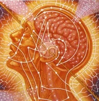 """The Secrets of Your """"Mind""""? – Is the Human Mind Merely a Result of Physical Processes?"""