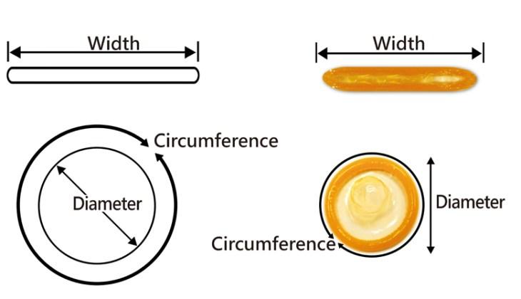 lungimea și circumferința penisului sunt normale depozite în penis