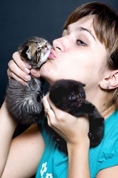 pisica-poze-dragute