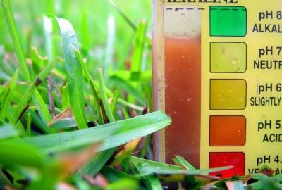 Nivelul pH-ului și cancerul, alimentele alcaline și acide