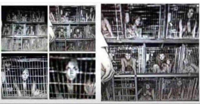 Copii ținuți captivi în cuști (imagine reală)