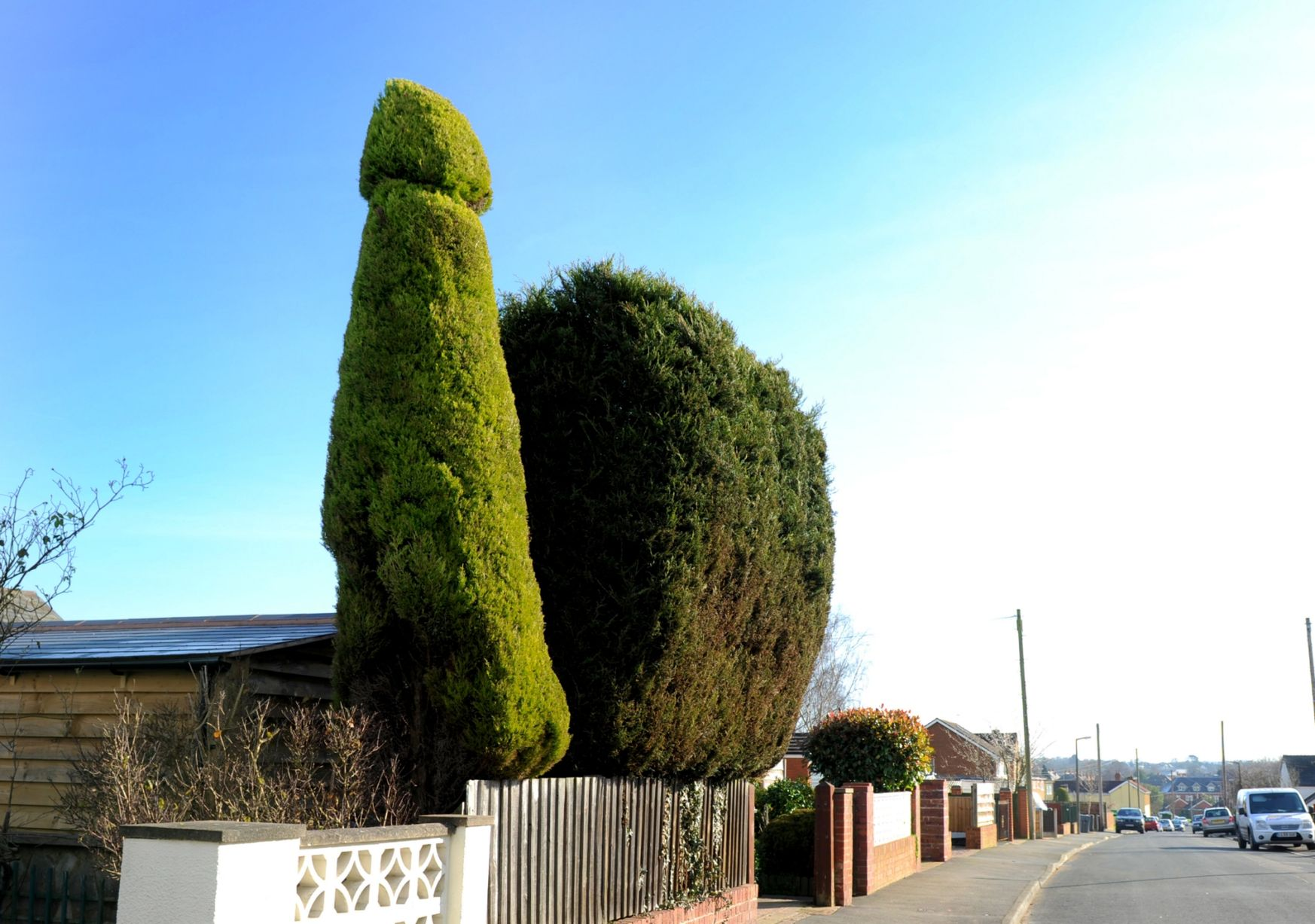 Neighbours Complain To Council About Man S 18ft Penis