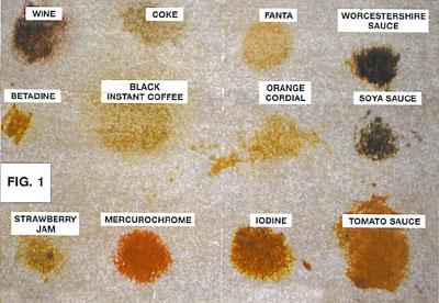 Carpet Cleaner In San Go Ca How To Remove Stains From Your