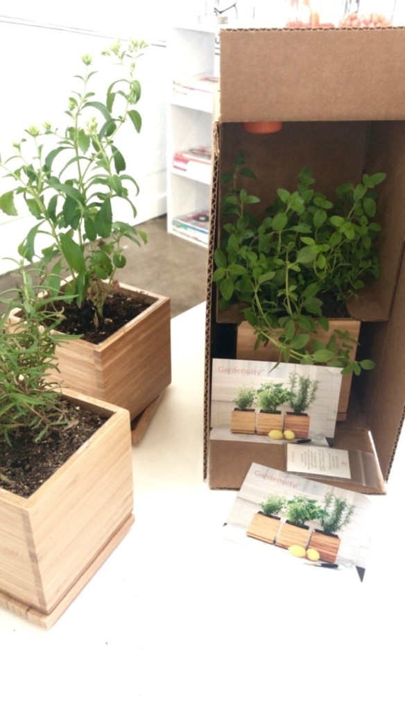 Gardenuity 5