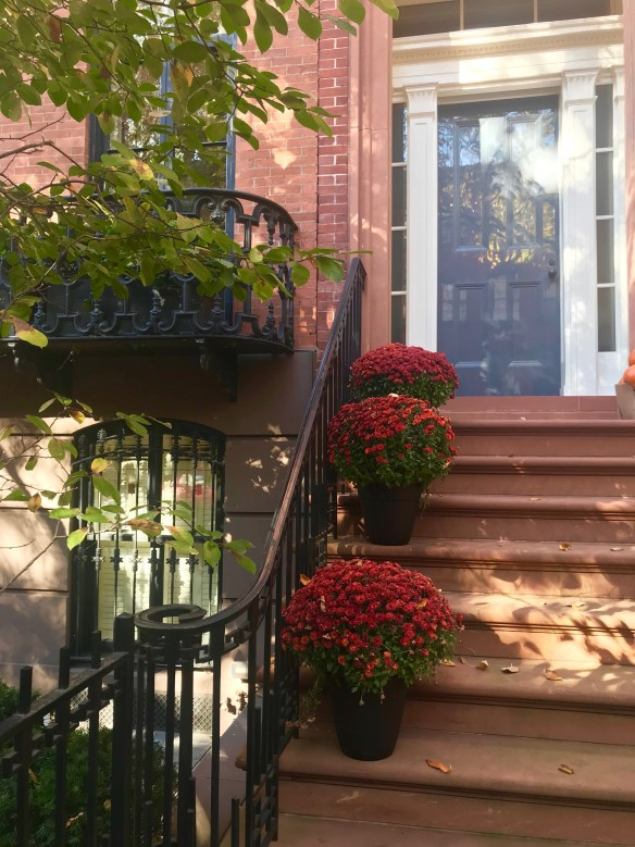 NYC townhouse photo by Christina Dandar for The Potted Boxwood 5
