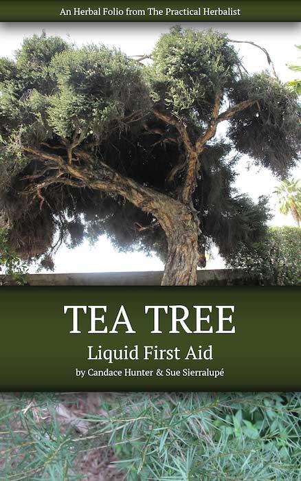 Tea Tree Folio Cover Little