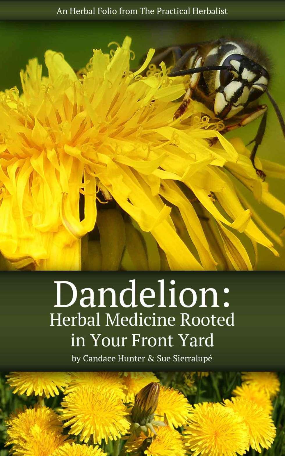 Dandelion Folio Cover