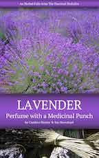 Lavender Herbal Folio Cover Mini