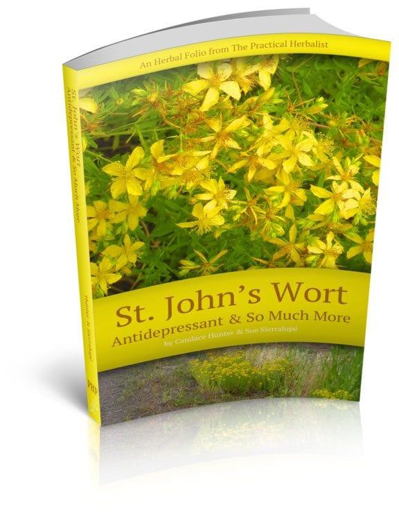 Saint John's Wort Is In!