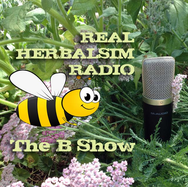 Show 41: The B Show – A Recap Of Show 40 And Herbal 101s