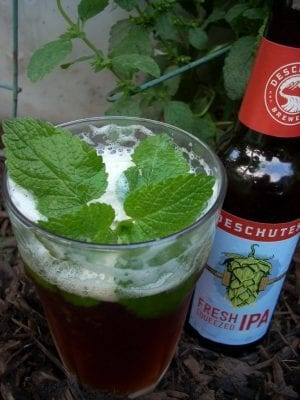 The Yin And Yang Of Beer – Shoestring Herbalist
