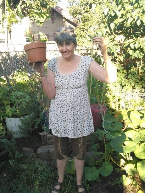 Houseplant Haircut – The Shoestring Herbalist