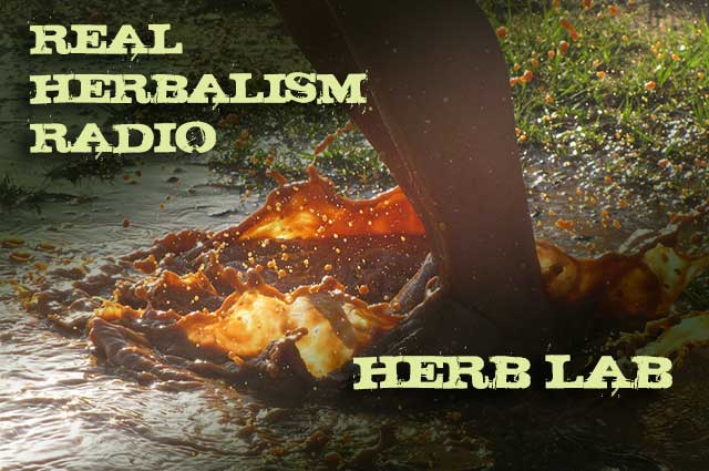 Show 85: Herb Lab Kids, Nature And Nettle