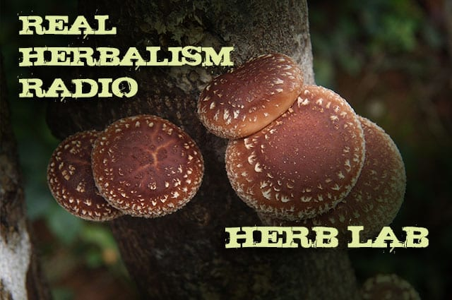 Show 121: Herb Lab – The Mushrooming World Of Mushrooms With Jeff Chilton