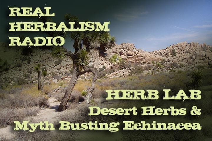 Show 143: Herb Lab – Desert Herbs And Myth Busting Echinacea