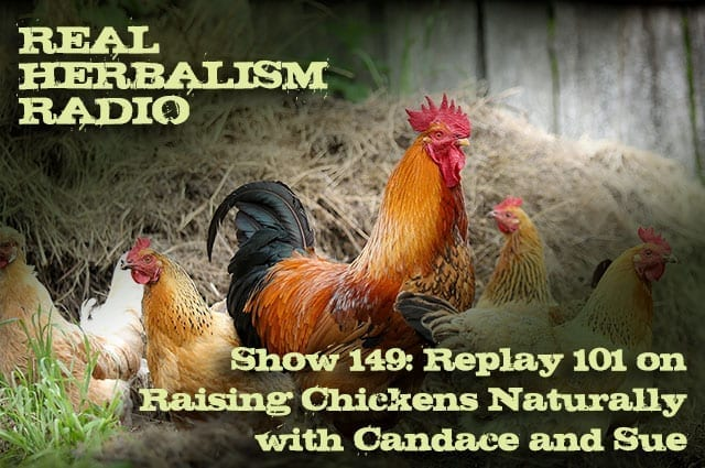 Show 149: Replay 101 On Raising Chickens Naturally With Candace And Sue