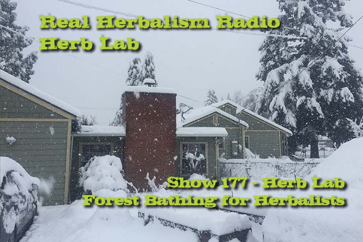 Herb Lab – Forest Bathing For Herbalists – Show 177