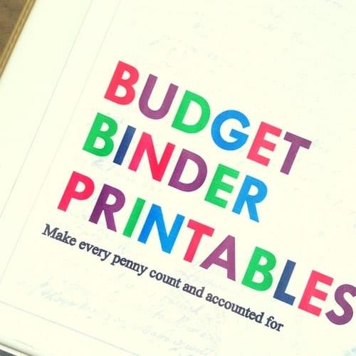 Budget Printable Binder Kit