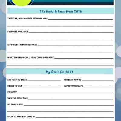 Printable: 2016 in Review & Setting Goals for 2017