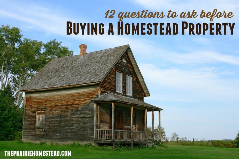 12 Questions To Ask Before Buying Homestead Property The