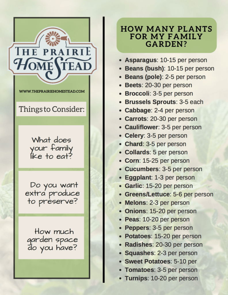 how much to plant in your garden per person to feed your family