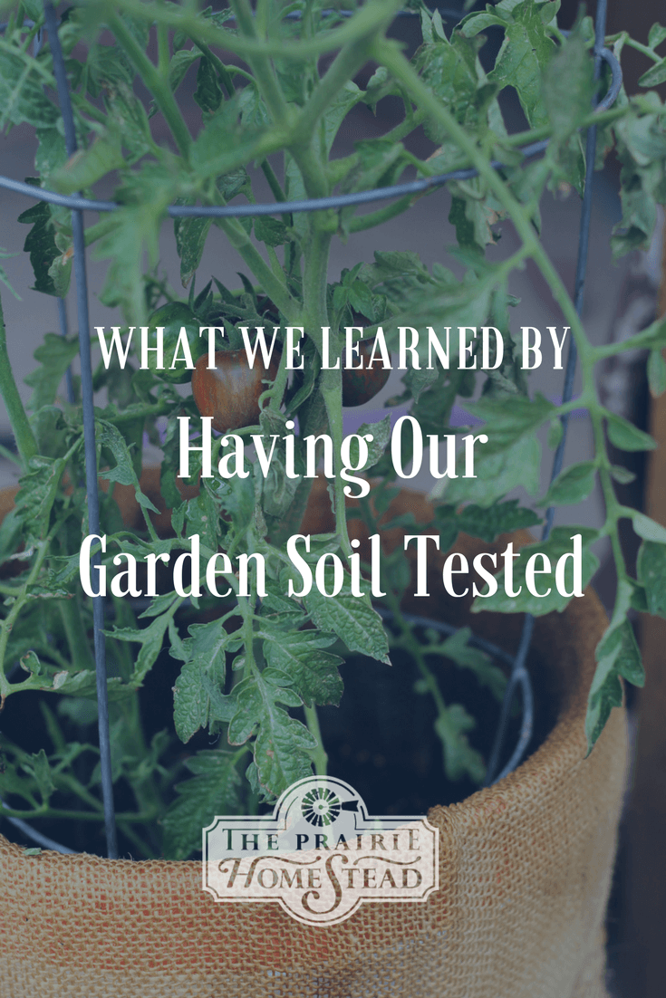 what we learned by testing our garden soil