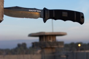 SOG Seal Pup - Great knife and reasonably priced.