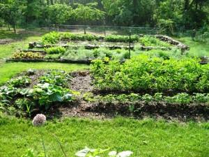 Linda's Home Garden