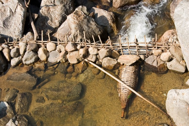 Fish Trap | Survival Skills You Can Practice While Camping