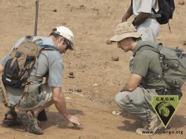 Rangers investigating tracks in soil