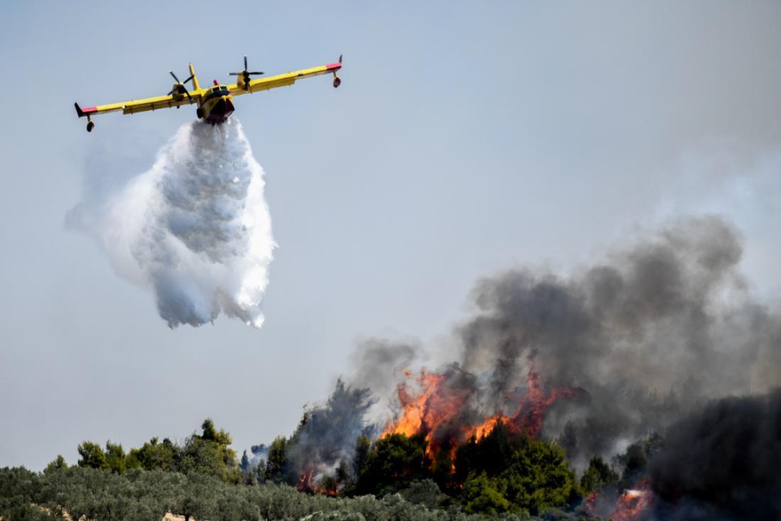 Πυρκαγιά στον Άγιο Κυπριανό Ανατολικής Μάνης   ΕΛΛΑΔΑ   thepressroom.gr