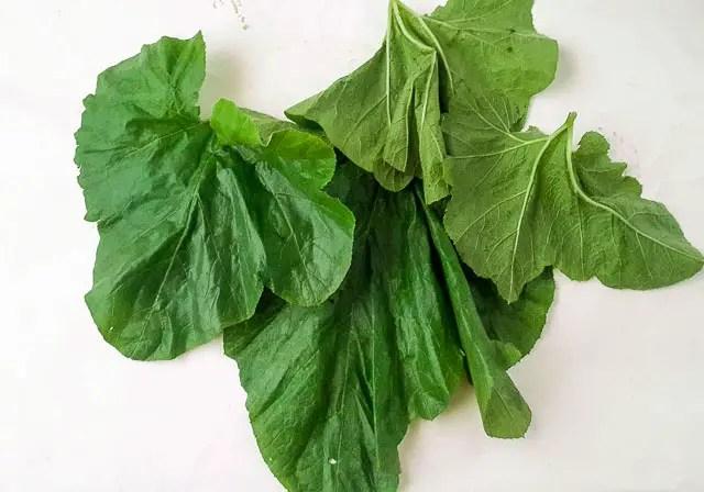 a close up of ugbogoro leaf
