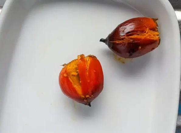 palmnut-1