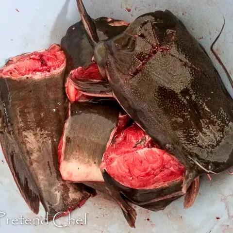 kill process catfish