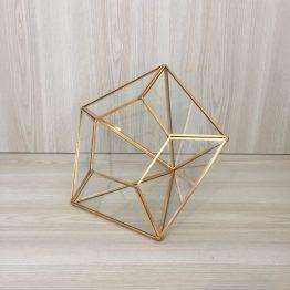 gold terrarium hire nz