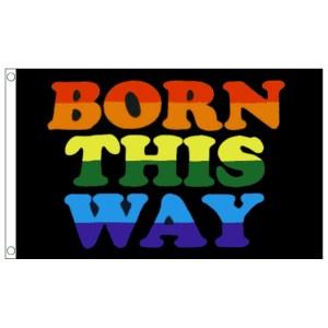 buy born this way lgbt pride 5' flag online