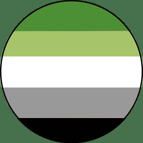 Aromantic Pride Flag Pin Badge for sale