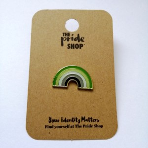 Aromantic Flag Rainbow Pin Badge