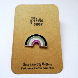 Asexual Flag Rainbow Pin Badge