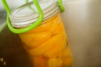 Whiskey Peaches - www.ThePrimalDesire.com